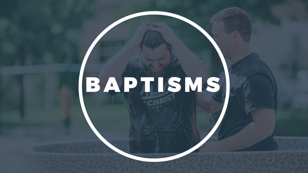 Church Picnic Baptism Interviews Image